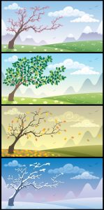 This image is a panel showing a tree in spring, summer, fall, and winter.